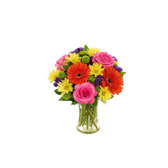 Rainbow Wishes Bouquet (BF510-11KM)